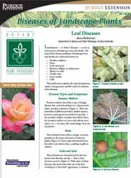 Diseases of Landscape Plants: Leaf Diseases