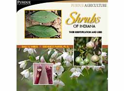 Shrubs of Indiana: Their Identification and Uses