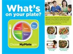 MyPlate Mini-Poster in English (100/pkg)