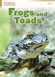 Frogs and Toads of Indiana