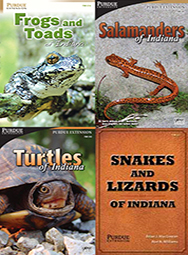 Indiana Amphibian and Reptile ID Package (4 softcover books)