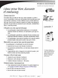 Have a Healthy Baby curriculum (Spanish)