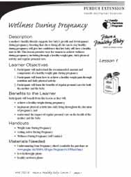 Have a Healthy Baby curriculum (English)