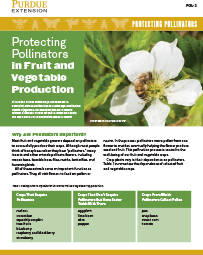 Protecting Pollinators: Protecting Pollinators in Fruit and Vegetable Production