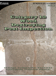 Wood Destroying Pest Inspection