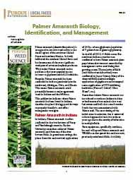 Palmer Amaranth Biology, Identification and Management